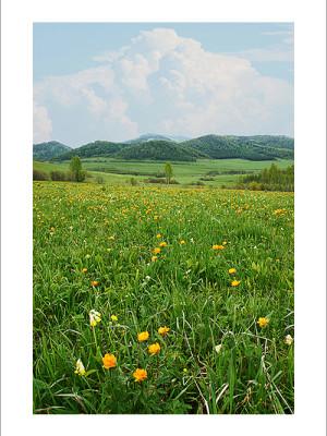 Разный Алтай. Фотограф из Кемерово Алексей Поселенов