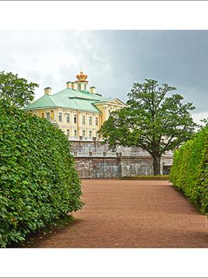 Вокруг Петербурга. Фотограф из Кемерово Алексей Поселенов