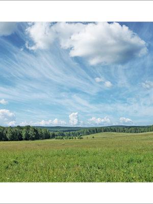 Фотохудожник в Кемерово, летние сибирские пейзажи
