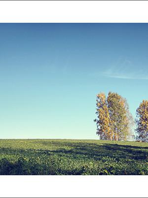 Фотограф из Кемерово Алексей Поселенов. Осенний сибирский пейзаж