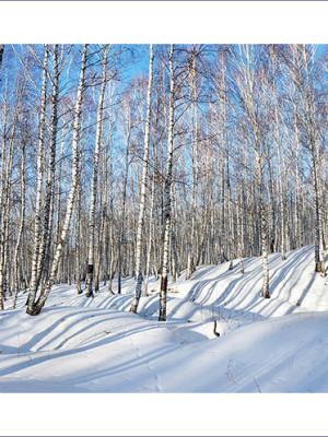 Фотограф в Кемерово. Зимние сибирские пейзажи.